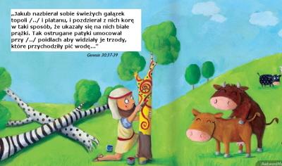 Niegrzeczna Biblia w wersji dla najmłodszychhttp://kulturawplot.pl/2013/12/05/niegrzeczna-biblia-w-wersji-dla-najmlodszych/