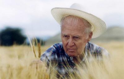"""Norman Borlaug - ojciec """"zielonej rewolucji"""", amerykański biolog i agronom, hodujący nowe odmiany bardziej odpornej i dającej wyższe plony pszenicy. Zielona rewolucja zakończyła klęski głodowe w Indiach i Pakistanie, radykalnie przyczyniła się do poprawy zaopatrzenia w żywność w Meksyku i w innych krajach Ameryki Południowej. W 1970 roku otrzymał za swoje wysiłki pokojową Nagrodę Nobla."""