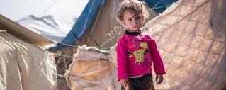 Źródło: UNICEF