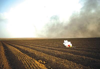 Balony na spalonym polu w pobliżu granicy między Izraelem a Strefą Gazy, październik 2018. (zdjęcie: AMIR COHEN/REUTERS)