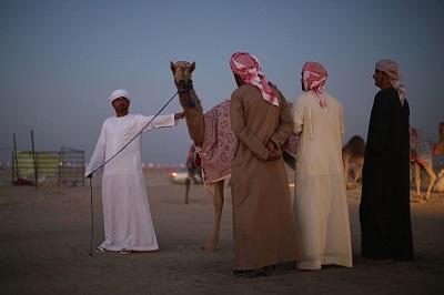 Beduini w Abu Dhabi. (Zdjęcie: Dan Kitwood/Getty Images)