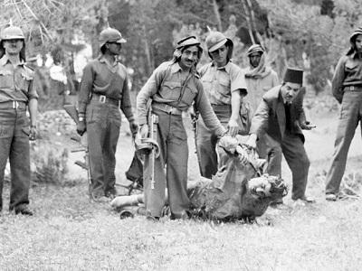 Żołnierze Legionu Arabskiego z rannym żołnierzem izraelskim. Jerozolima 1948.