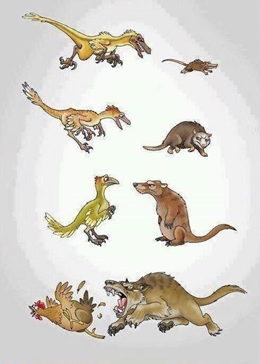 Uważajcie na wredne ssaki