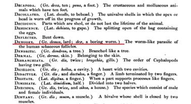 Wykłady Richarda Owena z 1843 roku (link w tekście)
