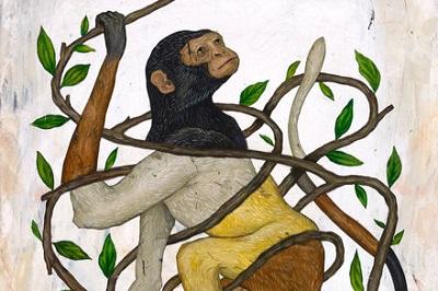 https://www.nytimes.com/2018/08/13/books/review/david-quammen-tangled-tree.html?ref=oembed