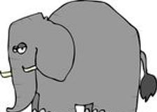 Słoń w salonie: pieniądze <br />