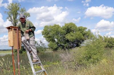 John Eadie sprawdza przygotowaną skrzynię na gniazdo kacze w pobliżu Butte City w Kalifornii.