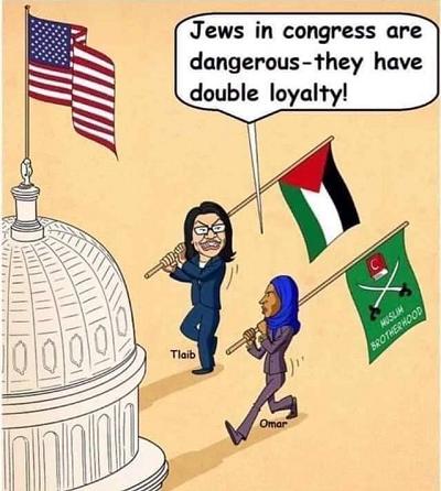 <span>Fakt, że Omar i Tlaib plują nie tylko na Izrael, ale i na amerykańskich Żydów, nie przeszkadza amerykańskim organizacjom żydowskim w ich popieraniu. </span>