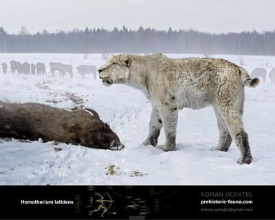 Był wielkości mniej więcej samca afrykańskiego lwa Prehistoric Fauna</a>wygląda tak (proszę zauważyć szablasty ząb i krótki ogon)