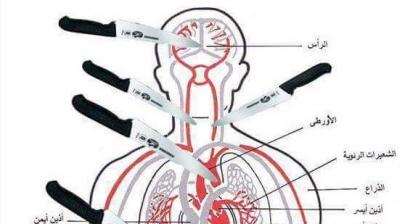 Rysunek anatomiczny na Facebooku Gazańczyka, Zahrana Barbaha, zamieszczony 8 października, pokazujący, w które części ciała celować przy atakowaniu ofiary nożem. (Za MEMRI)