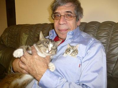 <span>Hili: bezpieczny kot</span>