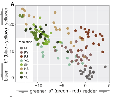 (From paper): Plant Color Variation ofFritillaria delavayiamong Populations. (A) Color divergence from eight populations in human CIE L∗a∗b∗ color space