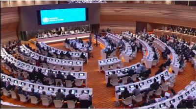 Zgromadzenie Światowej Organizacji Zdrowia ONZ głosuje nad antyizraelską rezolucją 25 maja 2016