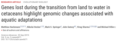 https://advances.sciencemag.org/content/5/9/eaaw6671