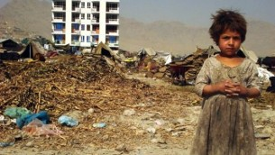 Afganistan po 13 latach okupacji: śmiertelność niemowląt wynosi 117 zgonów na 1000 żywych urodzeń – najwyższa na świecie (Zachodni Brzeg – 13, Gaza – 15). Stopień alfabetyzacji: Afganistan 28%, Zachodni Brzeg i Gaza 95%.
