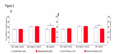 (From paper.) Figure 2. Methylation at FKBP5 intron 7, bins 1, 2 and 3 for Holocaust survivors (A), Holocaust survivor offspring (B) and their respective comparison subjects. The percent methylation (mean ± s.e.m.) is represented by red bars for Holocaust survivor parents and their offspring (F0:n=32, F1:n=22) and by white bars for F0 and F1 controls (F0:n=8, F1:n=9). Division of sites into bins is indicated. Significance was set at p<.05.