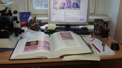 Patolodzy w pracy (relatywny porządek akurat, proszę doceniać)