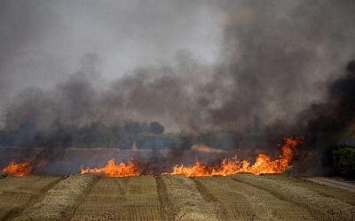 Strażacy gaszą pożar na polu pszenicy spowodowany płonącymi latawcami wypuszczonymi przez Palestyńczyków ze Strefy Gazy na Izrael. 30 maja 2018. (Zdjęcie – Yonatan Sindel, Flash 90)