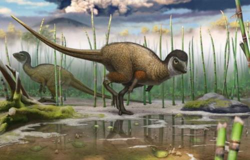 """(Z """"National Geographic""""): Ta ilustracja pokazuje Kulindadromeus zabaikalicus, nowo znalezionego opierzonego dinosaura, w jego środowisku naturalnym. ILUSTRACJA ANDREY ATUCHIN"""