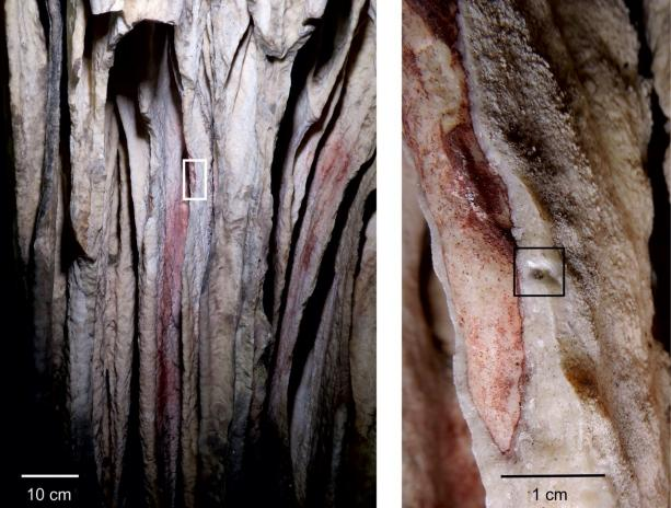 Fig. 3 Speleothem curtain 8 in section II-A-3 in Ardales cave with red pigment, painted before at least 65.5 ka ago. (Left) Series of curtains with red paint on top, partially covered with later speleothem growth. The white rectangle outlines the area shown at right. (Right) Detail of curtain 8. The black square indicates where carbonate, overlying the red paint, was sampled for ARD 13. See (20) for details.