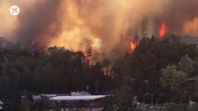 Pożar szaleje w centrum Hajfy, 24 listopada 2015. (Zrzut z ekranu: Haaretz)<br />