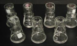 Dwanaście probówek, które zawierają bakterie w długotrwałym eksperymencie Lenskiego. Zdjęcie: Michael Wiser