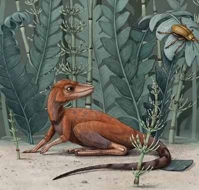 RekonstrukcjaK. kely, przypatrującego się chrząszczowi, zScience Alert;(rysunek: Alex Boersma).