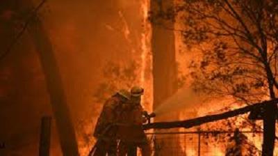Wolontariusze RFS strażacy z NSW Fire and Rescue ratują domy przy Wheelbarrow Ridge Road, zagrożone pożarem na górze Gospers w pobliżu Colo Heights, na północny zachód od Sydney, w listopadzie ubiegłego roku. Zdjęcie: AAP