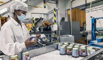 Palestyńczycy pracujący przy produkcji lodów B&J za zieloną linią.