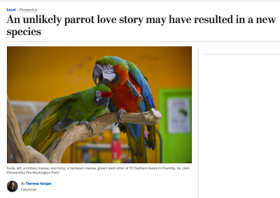 https://www.washingtonpost.com/gdpr-consent/?destination=%2flocal%2fan-unlikely-parrot-love-story-may-have-resulted-in-a-new-species%2f2020%2f01%2f03%2f115bf68a-2e66-11ea-bcd4-24597950008f_story.html%3f